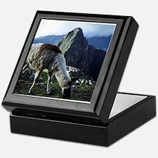 Cool Vicuna Keepsake Box