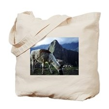 Cute Guanacos Tote Bag