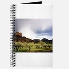 Sedona Journal
