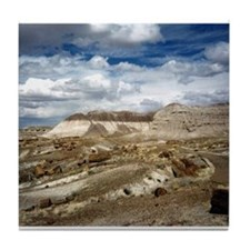 Petrified Forest, Arizona' Tile Coaster