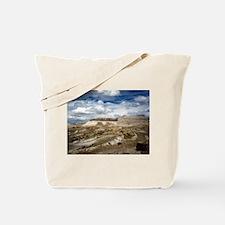 Petrified Forest, Arizona' Tote Bag