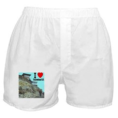 I (Heart) Yellowstone N.P. Mt. Washburn Boxer Shor