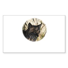 Bobcat in Brush Rectangle Decal