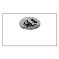 Wood Ducks Rectangle Sticker 50 pk)