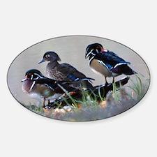 Wood Ducks Oval Sticker (10 pk)