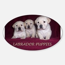Labrador Puppies Oval Decal