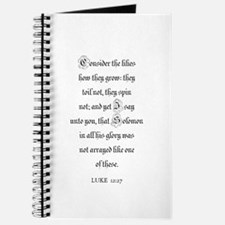 LUKE 12:27 Journal