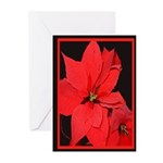 Poinsettia Greeting Cards (Pk of 20)