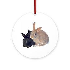 bunny rabbits Keepsake (Round)
