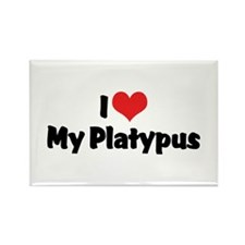 I Love My Platypus Rectangle Magnet (10 pack)