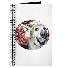 Labrador Doodles Journal