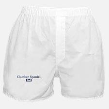 Clumber Spaniel dad Boxer Shorts