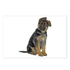 German Shepherd Puppy Postcards (Package of 8)