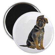 German Shepherd Puppy Magnet