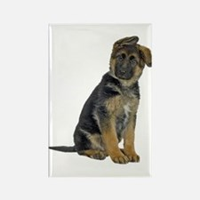 German Shepherd Puppy Rectangle Magnet