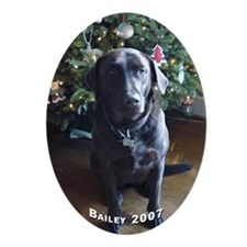 Bailey 2007 Oval Ornament