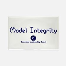 DP-Model Integrity Rectangle Magnet