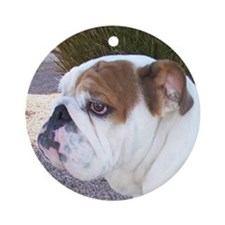 Penny's Paw Ornament (Round)