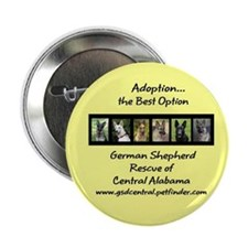 "Cute Animal welfare 2.25"" Button (10 pack)"