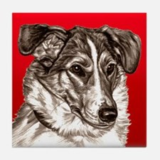 Collie Portrait Red Bkgr Tile Coaster
