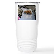 Fat Cat Travel Mug