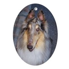 Long Faced Blue Merle Collie Christmas Ornament
