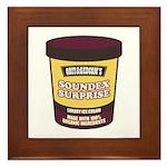Soundex Surprise Framed Tile