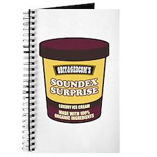 Soundex Surprise Journal