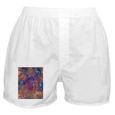 Trippy Psychedelic Boxer Shorts