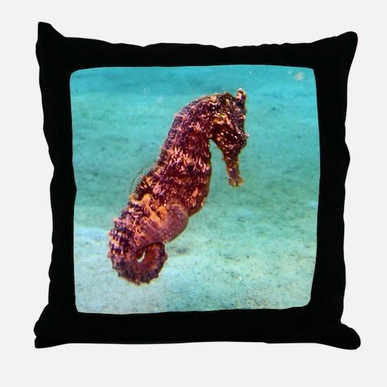 Red Seahorse Photo Throw Pillow