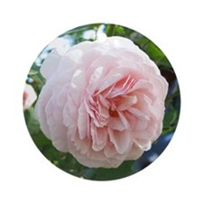 Pink Rose - Ornament (Round)