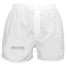 Quantum Materiae Boxer Shorts