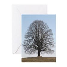 Bare Tree Cards (Pk of 10)