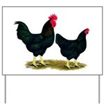 Black Broiler Chickens Yard Sign