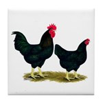 Black Broiler Chickens Tile Coaster