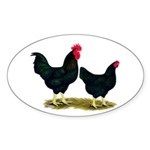 Black Broiler Chickens Oval Sticker (50 pk)