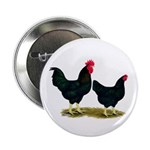 "Black Broiler Chickens 2.25"" Button (10 pack)"