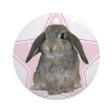 Bunny lover Round Ornaments