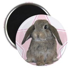 Baby bunny (pink) Magnet