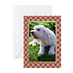 Labradoodle Christmas Cards (Pk of 10)
