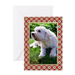 Goldendoodle Christmas Card