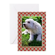 Goldendoodle Christmas Cards (Pk of 10)