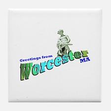 Turtleboy of Worcester Tile Coaster