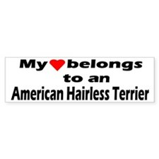 American Hairless Terrier Bumper Bumper Sticker