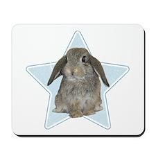Baby bunny (blue) Mousepad