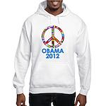 Re Elect Obama in 2012 Hooded Sweatshirt