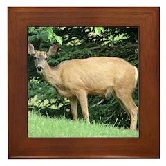 Watching Deer Framed Tile