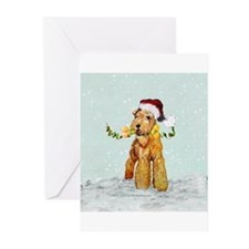 Lakeland Holiday Santa Greeting Cards (Pk of 10)