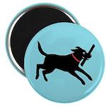"""Playful Black Lab 2.25"""" Magnet (10 pack)"""