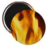 Artsy-Fartsy Flames Magnet